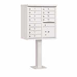 Salsbury Cluster Box Unit (Includes Pedestal) - 12 A Size Doors - Type II - USPS Access - White