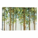 Forest Study I Crop by Lisa Audit Gallery Wrapped Canvas Artwork with Floating Frame - 27''W x 19''H x 1.5''D [WAC755-1PC6-26X18-FF01-ICAN]