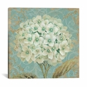 Hydrangea Square II by Wild Apple Portfolio Gallery Wrapped Canvas Artwork - 26''W x 26''H x 0.75''D [WAC1586-1PC3-26X26-ICAN]