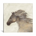 Into The Wind Ivory by Albena Hristova Gallery Wrapped Canvas Artwork - 18''W x 18''H x 0.75''D [WAC3713-1PC3-18X18-ICAN]