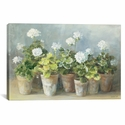 White Geraniums by Danhui Nai Gallery Wrapped Canvas Artwork - 26''W x 18''H x 0.75''D [WAC254-1PC3-26X18-ICAN]