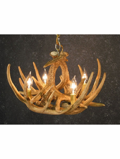 6 ANTLER WHITETAIL CHANDELIER