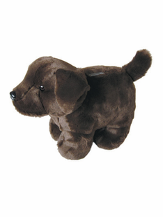 CHOCOLATE LAB COIN BANK