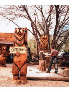 Custom Chainsaw Carvings