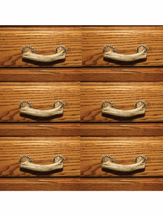 DEER ANTLER SINGLE DRAWER HANDLE SET OF 6