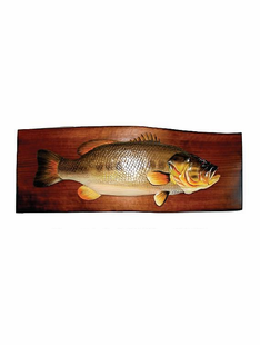 "FISHING- BASS PLAQUE 22""X9"""