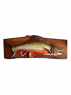 "FISING- BROOK TROUT PLAQUE 22""X9"""