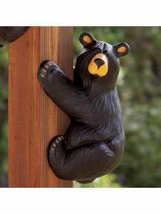 """Lefty"" Climber Bear"