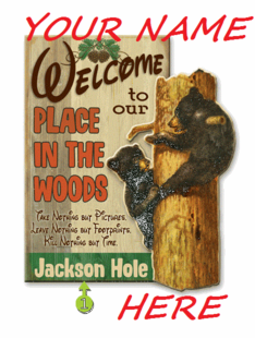 Personalized Cabin Signs