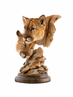 """SPELL BOUND"" MTN. LION SCULPTURE"
