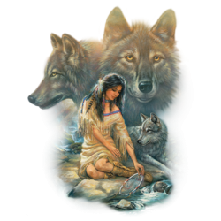 Wholesale Native American Maiden Wolf Clothing Apparel T-Shirts Bulk - 10954HL2