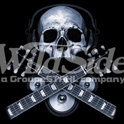 Skulls, Bulk T Shirts, Wholesale T Shirts, Suppliers, Apparel - 16034-13x12-skull-wheadphones-guitar-necks-speakers