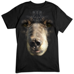 Wholesale Animal Clothing Apparel Bear Big Face T-Shirts Bulk - 18206D0