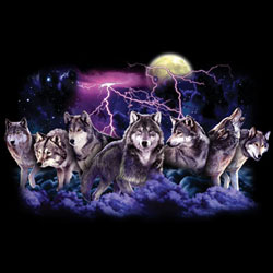 Wolf Apparel T Shirts Wholesale Supplier Bulk - MSC Distributors