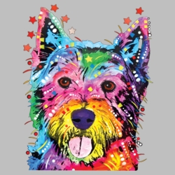 Wholesale Products - Neon T Shirts Graphic Funny Clothing in Bulk - 19055NBT2