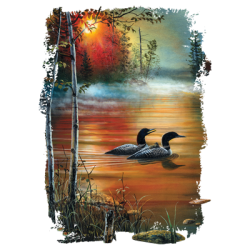 Graphic Wholesale Clothing and Apparel Drop Shipping - Ducks T Shirts - 21174HD2