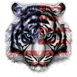 Political Tiger T Shirts - Wholesale Distributors
