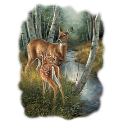 Shop Deer Design T-Shirts & Shirt Designs, Custom T-Shirts, Wholesale Bulk T Shirts Cheap - 21756HL2