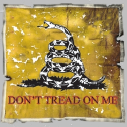 Wholesale Don't Tread on me T Shirts, Gildan T Shirts, Printed T Shirts, Bulk T Shirts - 6998