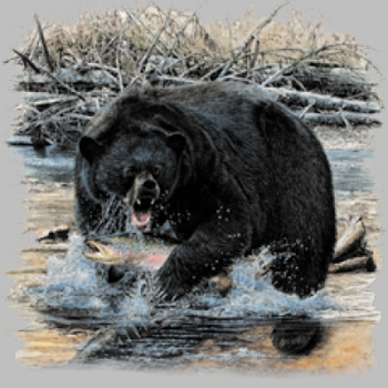 Wholesale Bear Wildlife Animal T Shirts, Gildan T Shirts, Printed T Shirts, Bulk T Shirts - 7223