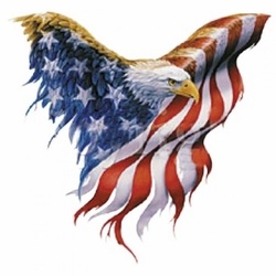 Wholesale Clothing Apparel - Eagle Flag Patriotic T Shirts, Wholesale, Bulk, Supplier - MSC Distributors - A13217A