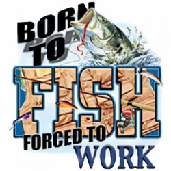 T-Shirts Wholesale,Funny Fishing Work Clothing Wholesale T-Shirts - A2824C