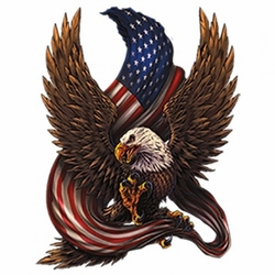 Wholesale Patriotic Eagle Clothing Apparel T Shirts Bulk - MSC Distributors