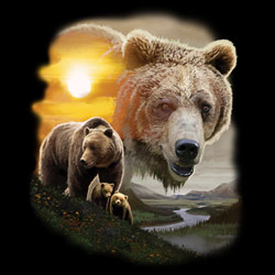 Animal Wildlife T Shirts Wholesale Merchandise - Grizzly Bear T Shirts - MSC Distributors