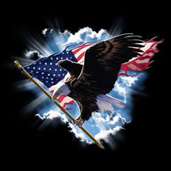 Wholesale T Shirts, Wholesale Hats, Patriotic T Shirts, Cheap Online Sale At Wholesale Prices - Patriotic, Eagle Flag - MSC Distributors