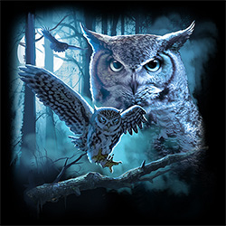 Wholesale Printed Owl Apparel T Shirts Hats Massachusetts - MSC Distributors