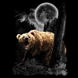 Animal Wildlife T Shirts - Wholesale Merchandise - Grizzly Bear T Shirts - MSC Distributors