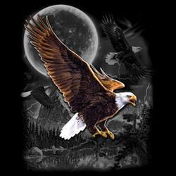Animal Wildlife T-Shirts - MSC Distributors