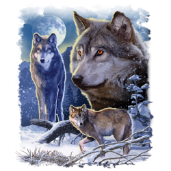 Country Wolf Moon T Shirts Hats Wholesale Bulk Supplier - 21658D2