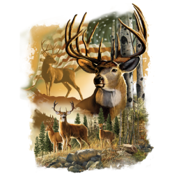 Wholesale Clothing, Country Deer Hunting T Shirts Hats Wholesale Bulk Supplier - 21659D2