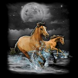 Horse, Equestrian, T Shirts Cheap Wholesale Online Drop Shipping - MSC Distributors