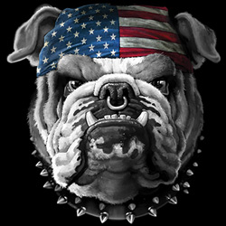 Wholesale Patriotic Bulldog Flag T Shirts Online at Cheap Price, Discount Patriotic Bulldog Flag T Shirts - MSC Distributors
