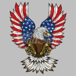 T Shirts Wholesale Bulk Suppliers - Fashion Patriotic Eagle Clothing For Men, Wholesale Bulk Supplier - 19163