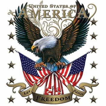 Heat Transfers - Bulk Wholesale T-Shirts - American Eagle Let Freedom Reign a10724a