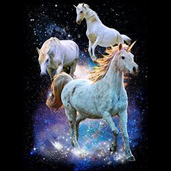 Unicorn Horse T-Shirts - MSC Distributors - 21554D2-1