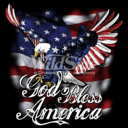 T-Shirts, Tees, Hats, Patriotic, American Flag, Cheap, Online, Wholesale - p-27822-16346-god-bless-america-eagle-flag-wing