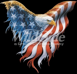 T-Shirts, Tees, Hats, Patriotic, American Flag, Cheap, Online, Wholesale -p-60691-12260-12x13-spread-eagle-flag