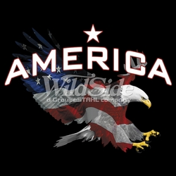 T Shirts American Eagle T-Shirts, Tees, Hats, Patriotic, American Flag, Cheap, Online, Wholesale - p-62541-15975-12x9-america-flag-eagle