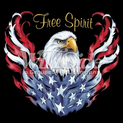 T-Shirts, Tees, Hats, Patriotic, American Flag, Cheap, Online, Wholesale - p-62789-13222-12x11-free-spirit-eagle
