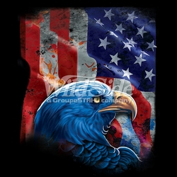 T-Shirts, Tees, Hats, Patriotic, American Flag, Cheap, Online, Wholesale -p-76546-17544-11x14-american-flag-eagle-shadow