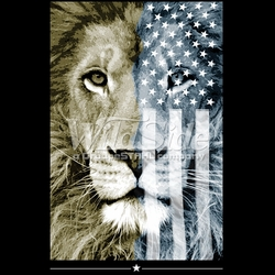 T-Shirts, Tees, Hats, Patriotic, American Flag, Cheap, Online, Wholesale -p-76780-17638-8x13-american-flag-lion