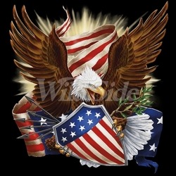 Patriotic, Bulk T Shirts, Wholesale Patriotic T Shirts - 18974