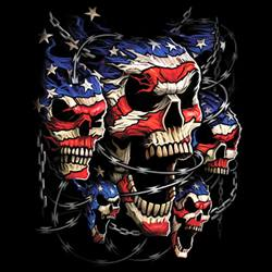 Wholesale T-Shirts, Bulk T-Shirts, Skulls, Patriotic - MSC Distributors
