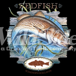 Wholesale Clothing Apparel -  Bulk, Saltwater Fishing Bulk T Shirts Wholesale Suppliers - p-63907-14409-12x14-red-fish-salt-water[1]