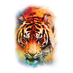 Wholesale Bengal Tiger T Shirts Online at Cheap Price, Discount Bengal Tiger T Shirts - 20662HL2-1