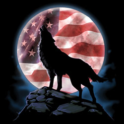 Wholesale T-Shirts, Bulk T-Shirts, Patriotic, Wolf, Suppliers - AMERICAN HOWL  20288D1-1